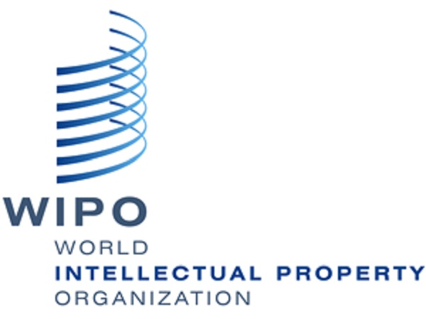 Astrakhan State University Invites to Take Part in WIPO Online Seminar