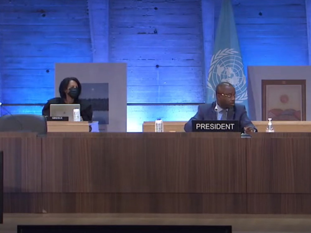 ASU Representatives Take Part in the 211st Session of the UNESCO Executive Board Online