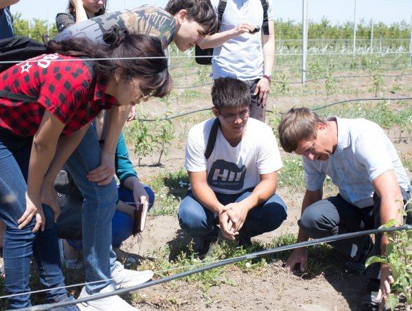 Приволжский фермер ждёт на работу студентов АГУ